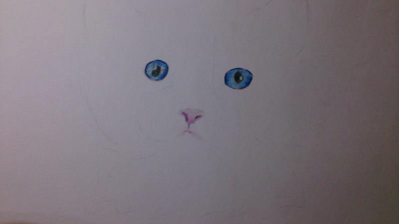 Рисуем пушистого котенка цветными карандашами - шаг 2
