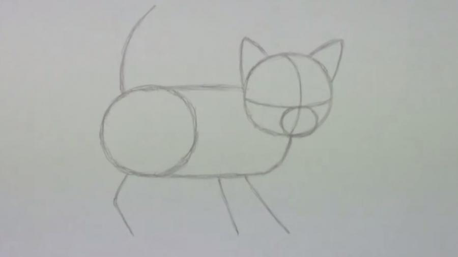 Рисуем пушистого котенка простым - шаг 2