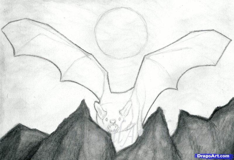 Рисуем реалистичную летучую мышь - шаг 7