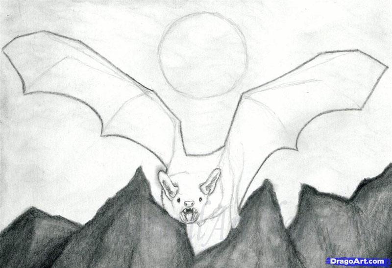 Рисуем реалистичную летучую мышь - шаг 8