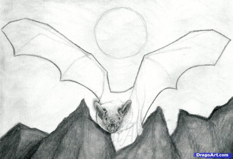 Рисуем реалистичную летучую мышь - шаг 9