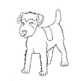 Рисуем щенка карандашами - шаг 3