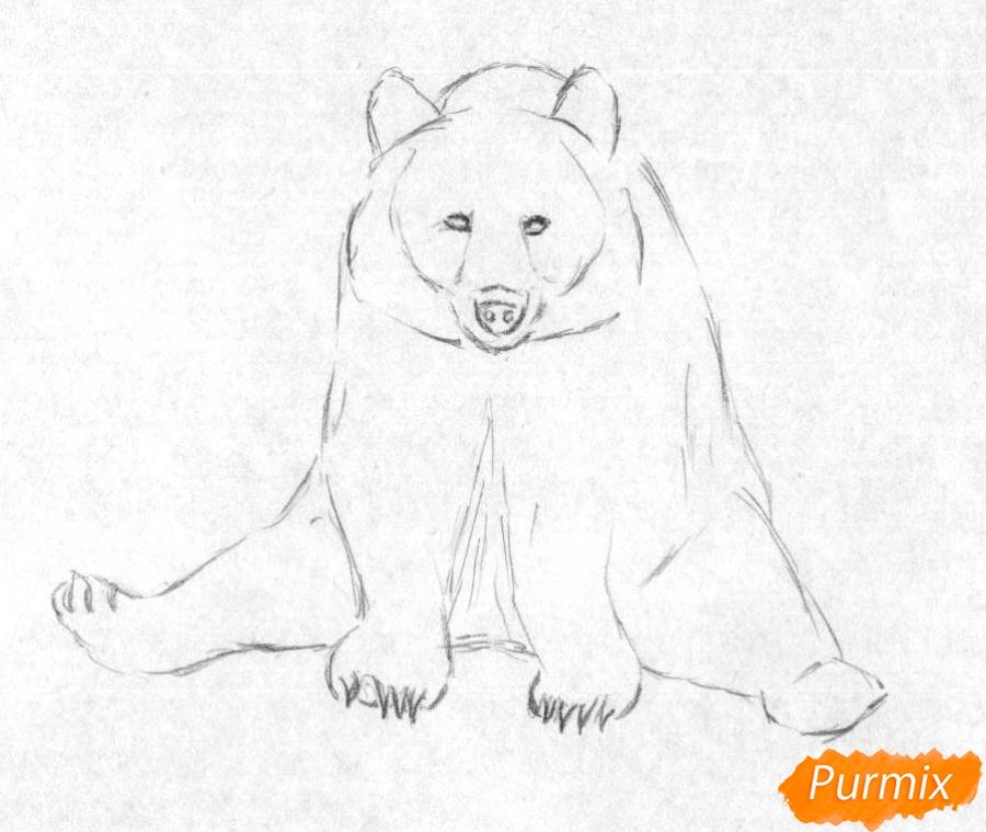 Рисуем сидящего медведя карандашами и чёрной ручкой - шаг 1