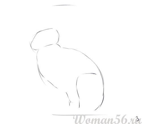 Рисуем сидящего зайца - шаг 3
