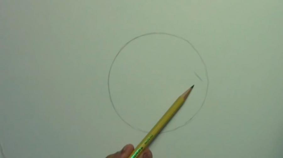 Рисуем собаку породы Шелти - шаг 1