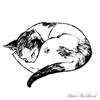 Спящую кошку карандашом