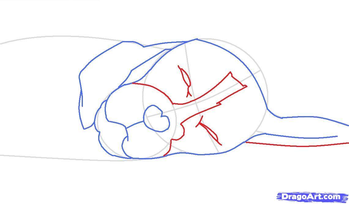 Как просто нарисовать спящую собаку - шаг 4
