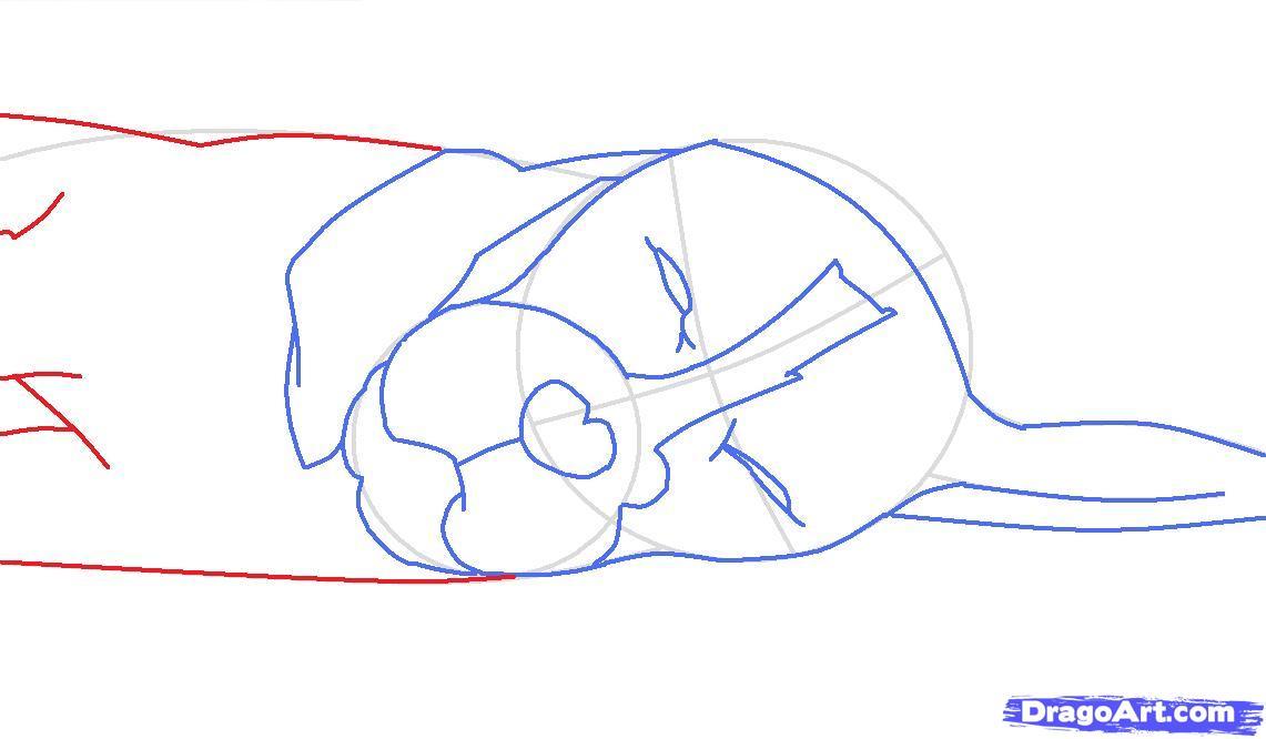 Как просто нарисовать спящую собаку - шаг 5