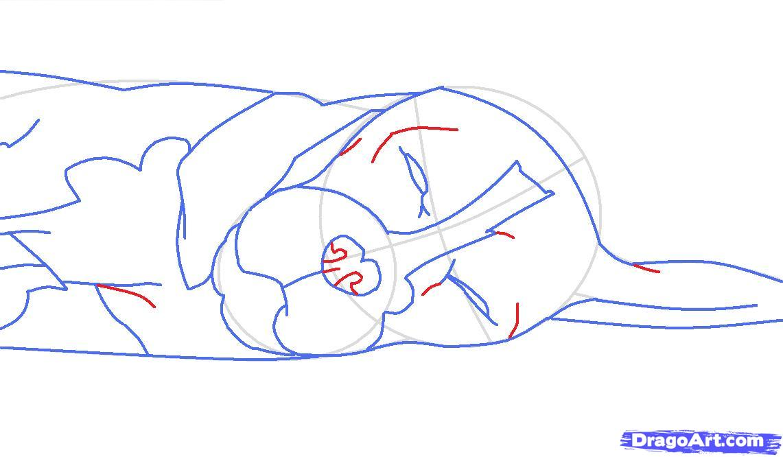 Как просто нарисовать спящую собаку - шаг 7