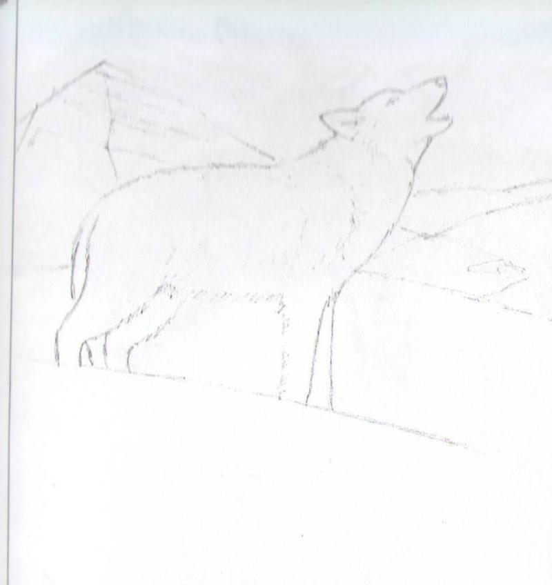Рисуем воющего волка - шаг 3