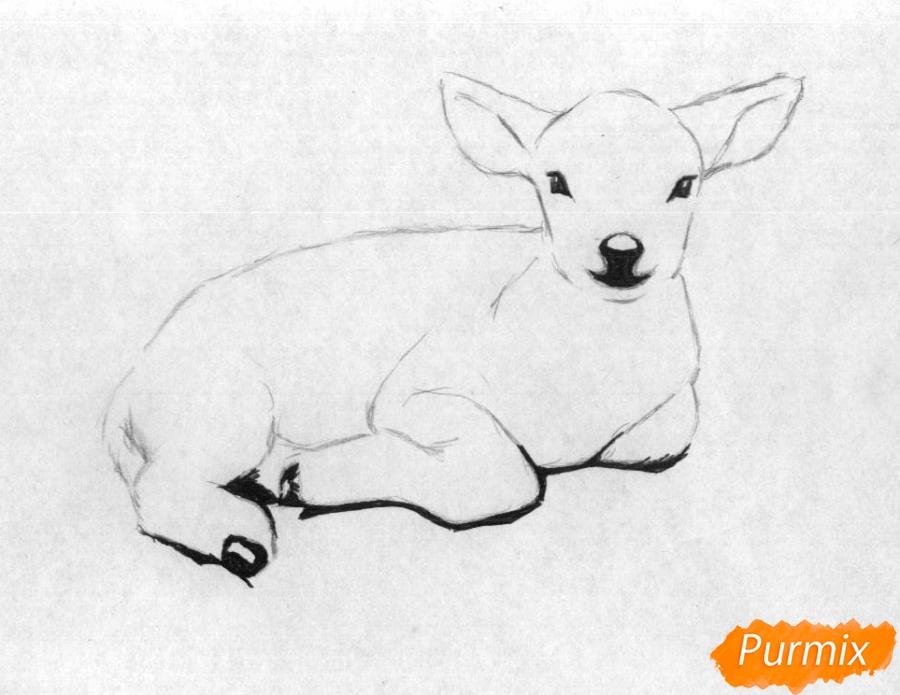Рисуем ягнёнка простыми карандашами и чёрной ручкой - шаг 2