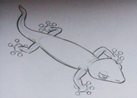 Как легко нарисовать ящерицу - шаг 3
