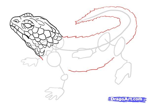 Рисуем ящерицу   для начинающих - шаг 11