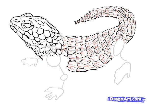 Рисуем ящерицу   для начинающих - шаг 14