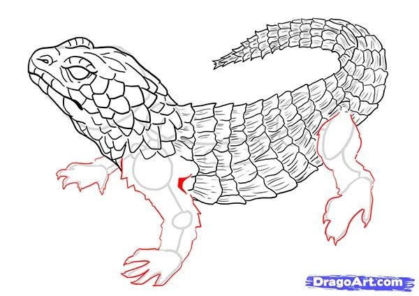 Рисуем ящерицу   для начинающих - шаг 15