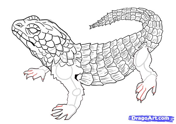 Рисуем ящерицу   для начинающих - шаг 16