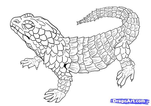 Рисуем ящерицу   для начинающих - шаг 17