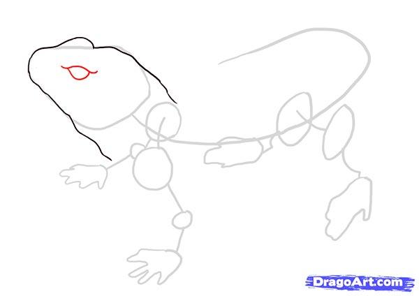 Рисуем ящерицу   для начинающих - шаг 3