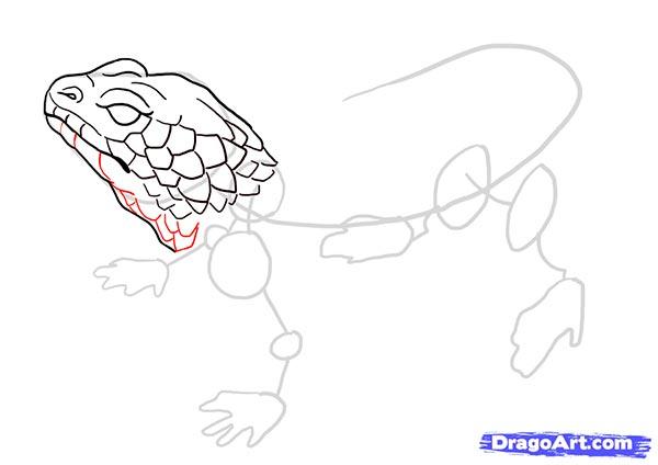Рисуем ящерицу   для начинающих - шаг 9