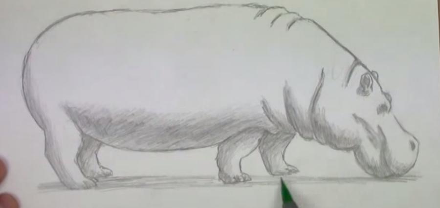 Рисуем бегемота - шаг 5