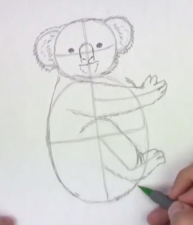 Рисуем коалу   для начинающих - шаг 3