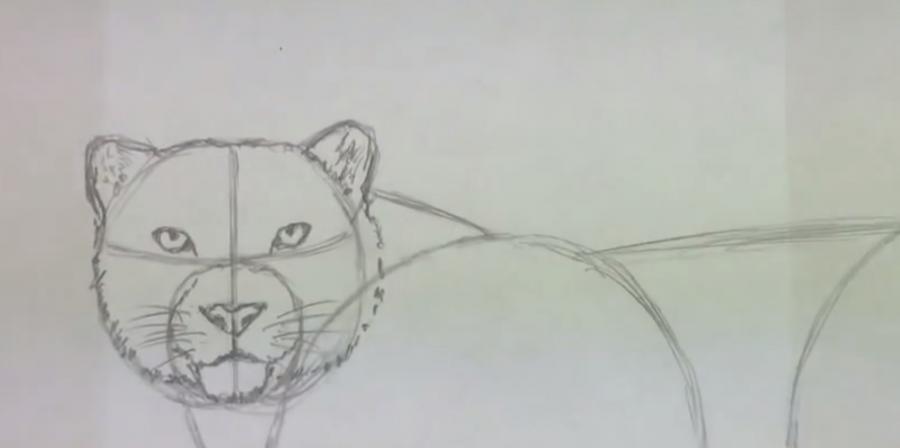 Рисуем леопарда - шаг 3