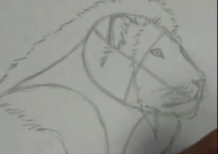 Рисуем льва в полный рост - шаг 3