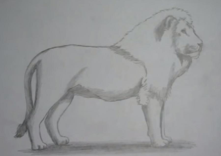 Рисуем льва в полный рост - шаг 6