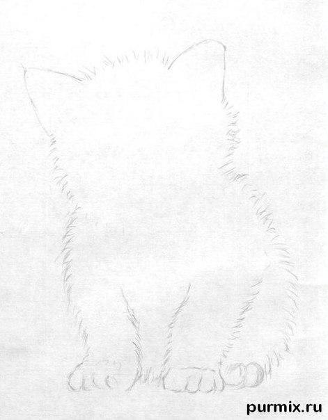 Рисуем маленького котенка простым - шаг 1