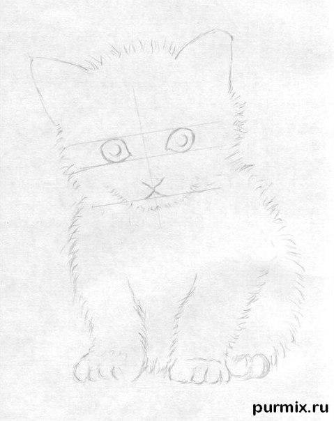Рисуем маленького котенка простым - шаг 3