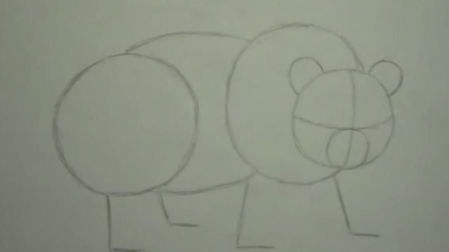 Рисуем панду - шаг 1