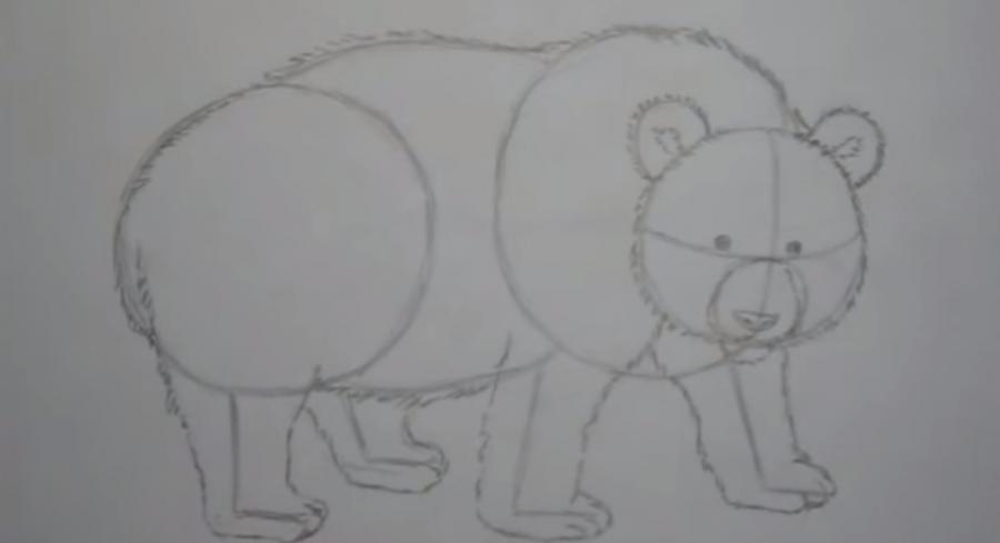 Рисуем панду - шаг 3