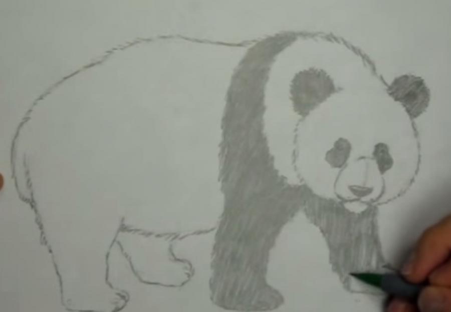 Рисуем панду - шаг 5
