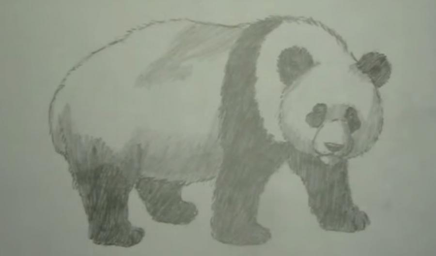Рисуем панду - шаг 6