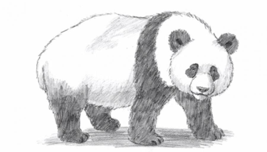 Рисуем панду - шаг 7