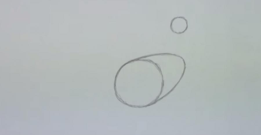 Рисуем петуха  для начинающих - шаг 1