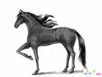 реалистичную лошадь