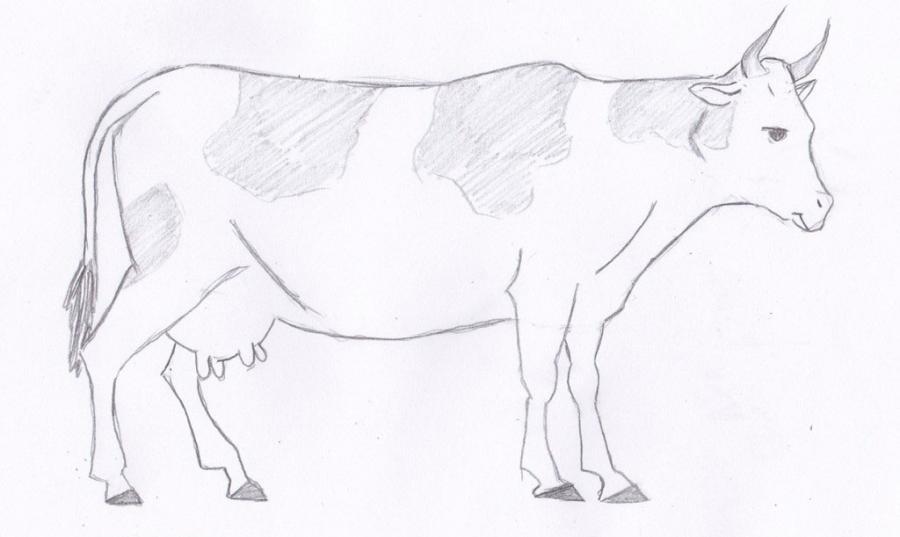 Как просто нарисовать корову  для начинающих - шаг 5