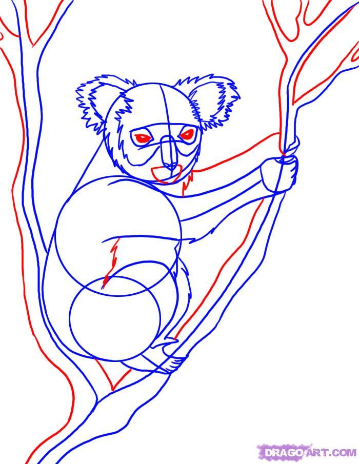 Рисуем коалу на дереве - шаг 4