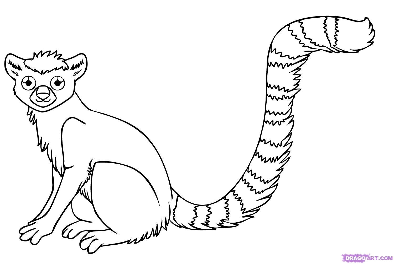 Рисуем лемура - шаг 7