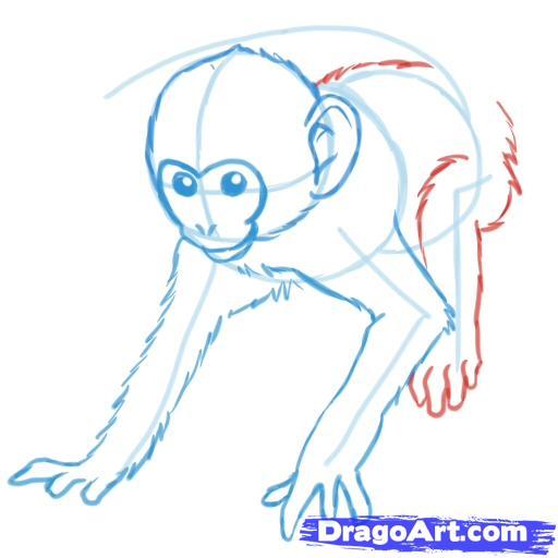 Рисуем обезьяну - шаг 5