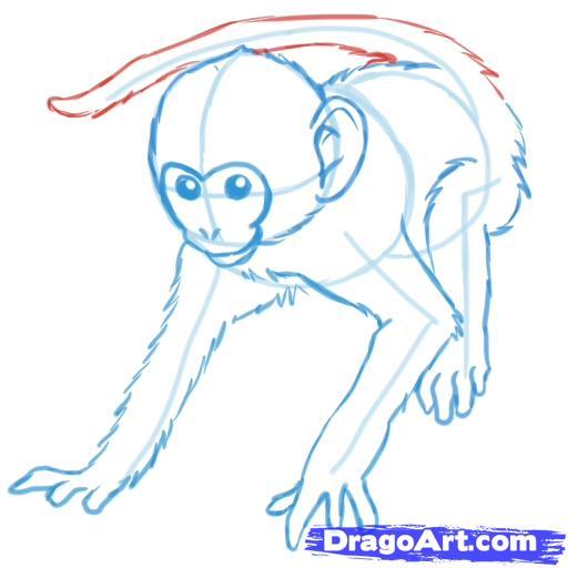 Рисуем обезьяну - шаг 6