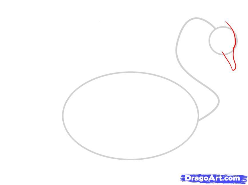 Учимся рисовать лебедя - шаг 2