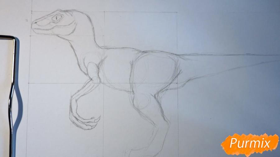 Учимся рисовать Велоцираптор - шаг 6