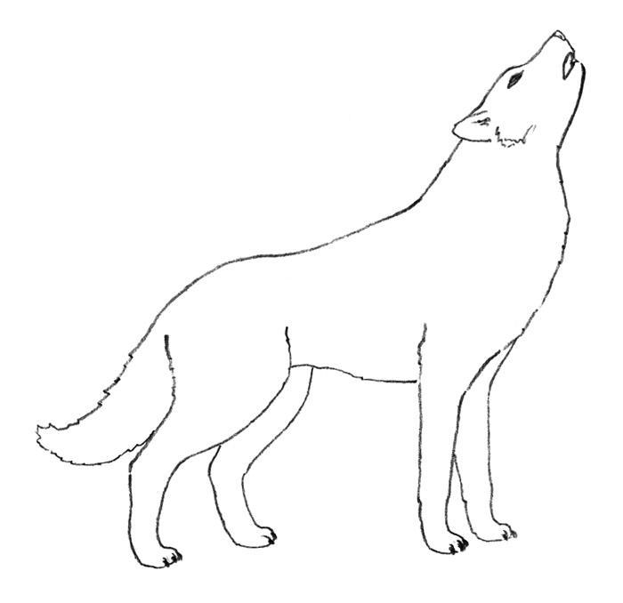 Как легко нарисовать воющего волка детям - шаг 3
