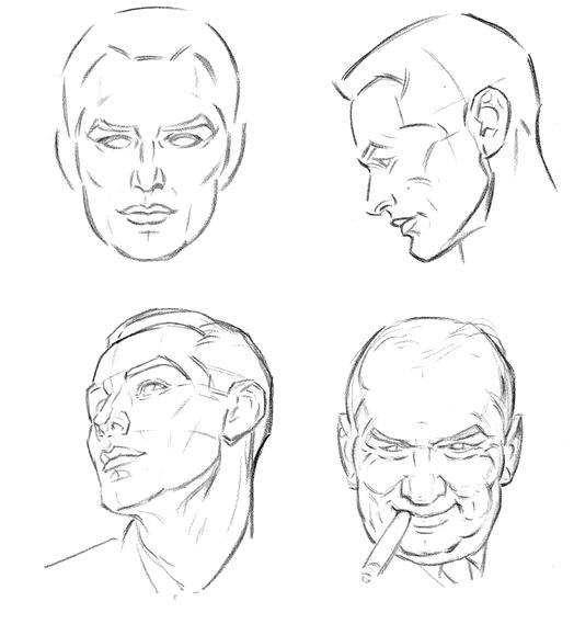 Линии головы человека - шаг 1