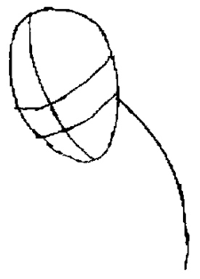 Рисуем человека паука для начинающих - шаг 1