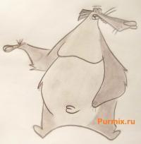 медведя Барри из Крутых бобров карандашом