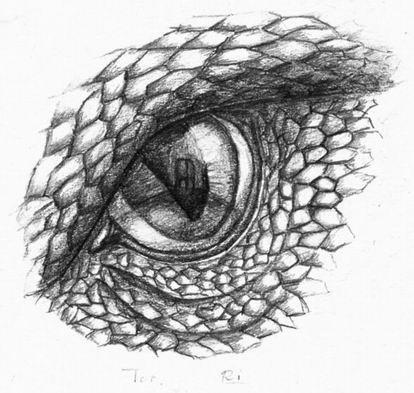 Рисунки глаза дракона - шаг 6