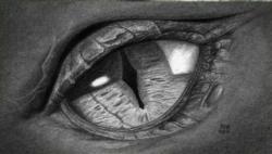 Фото глаз дракона карандашом